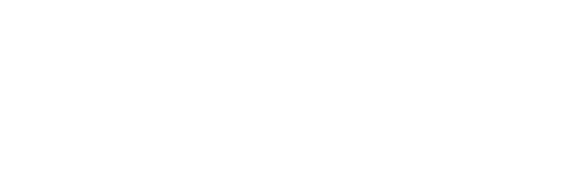 Logo-IAOA